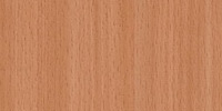 Savaria beech